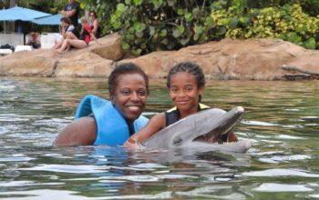 Six Words that Made me a Brand Ambassador for Discovery Cove